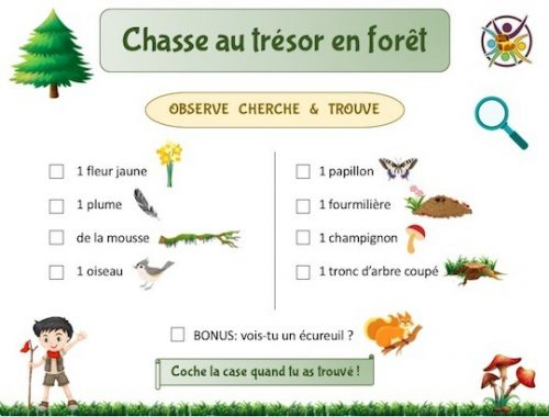 Chasse au trésor en forêt gratuite à imprimer pour enfants