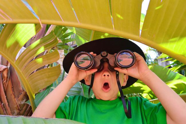 jeux anniversaire jungle et safari